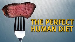 Perfect Human Diet - A Scientific and Historical Investigation of the Benefits of the Paleo Diet